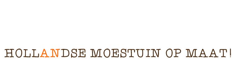 woody-woody_plant-an_hollands hout_van eigen bodem_zin_00